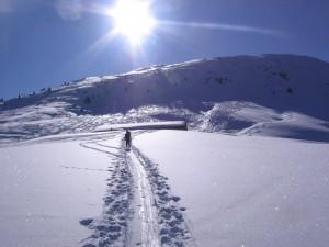 Alpe-Lurein