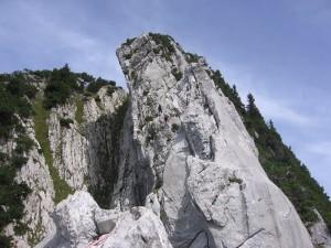wildhuser-schafberg