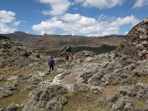 Bale-Mountains