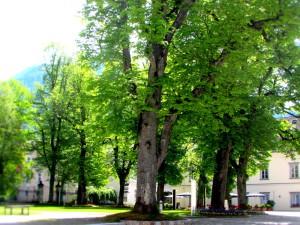 Admont, Steiermark