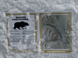grizzly-warning