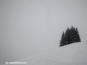 Bregenzer Wald, Vorarlberg