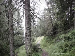 Stanzer Tal, Tirol, Wandern