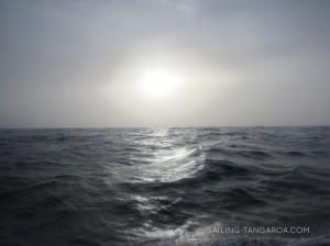 Segeln nach Malta