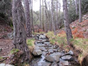 Kaledonia Wasserfall E4 Zypern